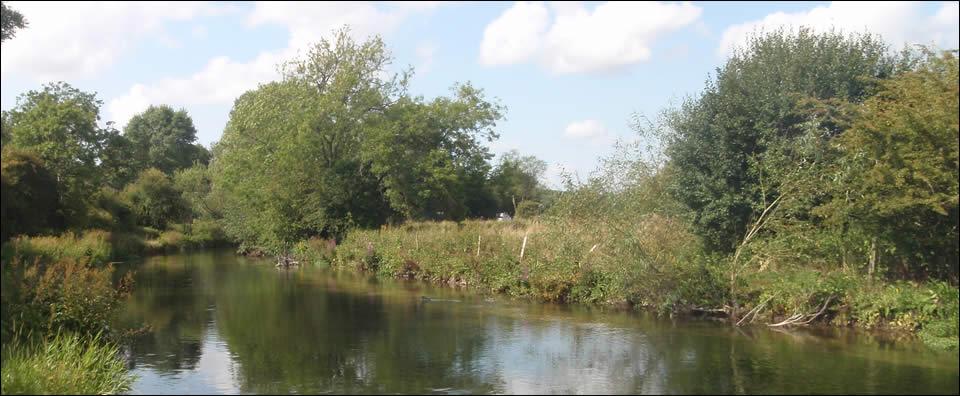 Durrington Fishery